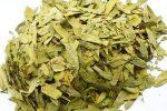 Как принимать листья сенны – Сенна — отзывы, применение, противопоказания